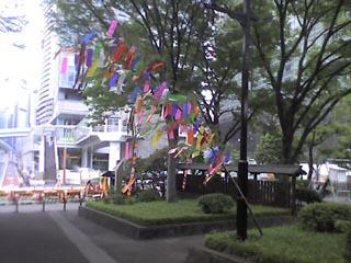 Photo_070107_001-.jpg
