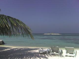 saruzou_maldives.jpg