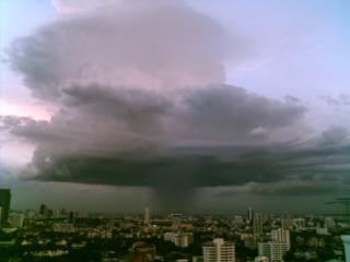 saruzou_rain.jpg